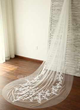 One-tier Cut Edge Cathedral Bridal Veils With Applique/Lace