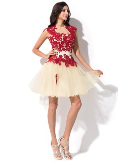 A-Line/Princess Scoop Neck Short/Mini Tulle Homecoming Dress With Appliques Lace
