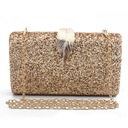 Unique Sparkling Glitter Clutches/Minaudiere