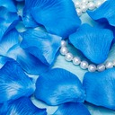 Rhapsody In Blue Rose Petals (Set of 5 packs)