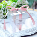 Creative/Classic Cubic Plastic Favor Boxes & Containers With Ribbons (Set of 20)