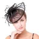 Dames Accrocheur Feather/Fil net avec Feather Chapeaux de type fascinator/Kentucky Derby Des Chapeaux/Chapeaux Tea Party