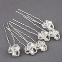 Fashion Rhinestone/Alloy Hairpins(Set of 6) (042073401)