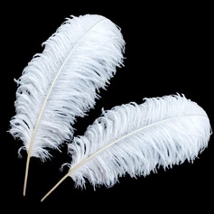 Beautiful Feather Decorative Accessories