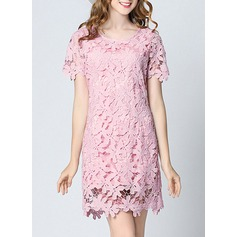 Polyester With Lace/Stitching Above Knee Dress (199132889)