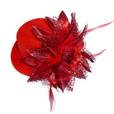 Ladies' Beautiful Feather Fascinators
