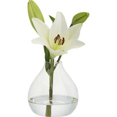 Pretty Glass Vase