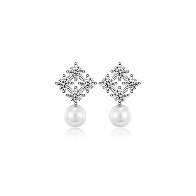 Ladies' Sparking 925 Sterling Silver/Cubic Zirconia Cubic Zirconia Earrings For Her